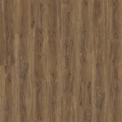 ambiant-robusto-src-warm-brown-2532