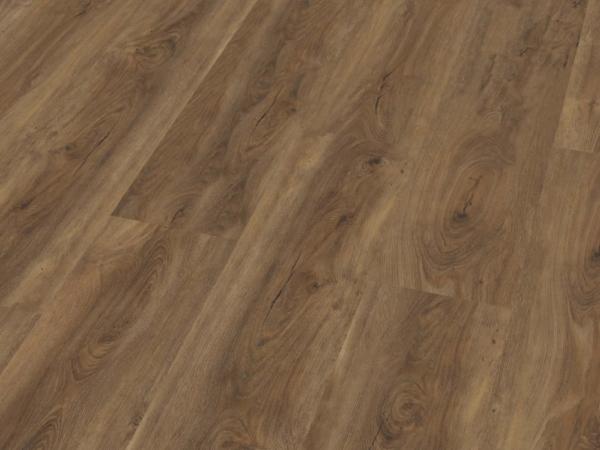 ambiant-robusto-warm-brown-2532