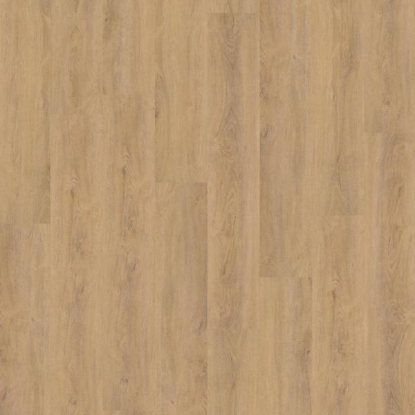 ambiant-robusto-natural-oak-2555