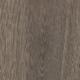 55917-mflor-solcora-lombardia